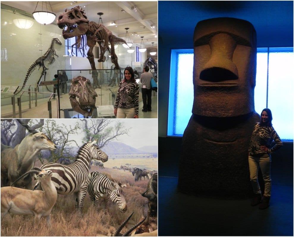 Museu-ny