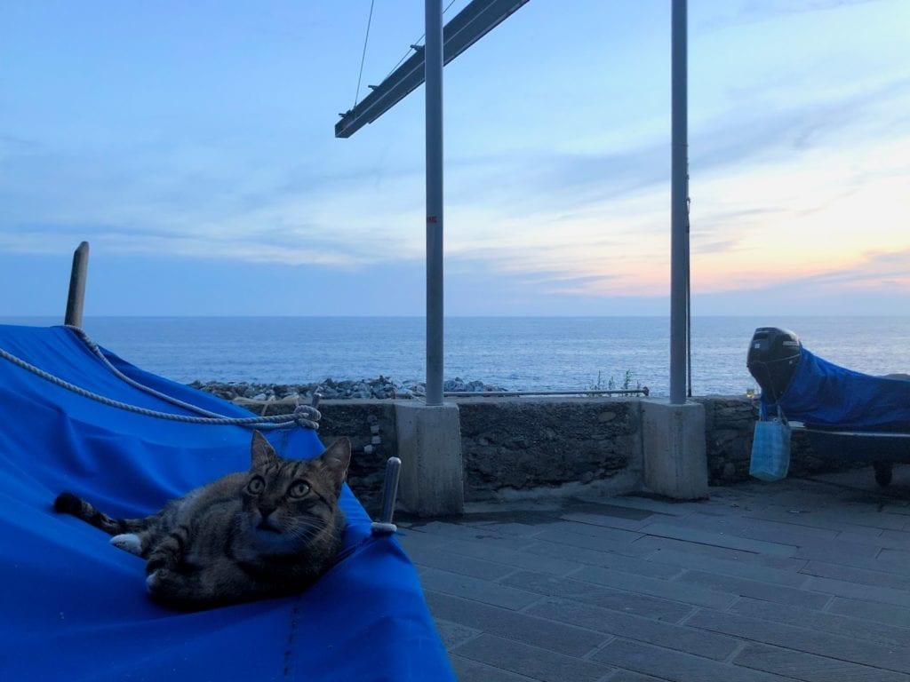 cinque-terre-italia-sunset