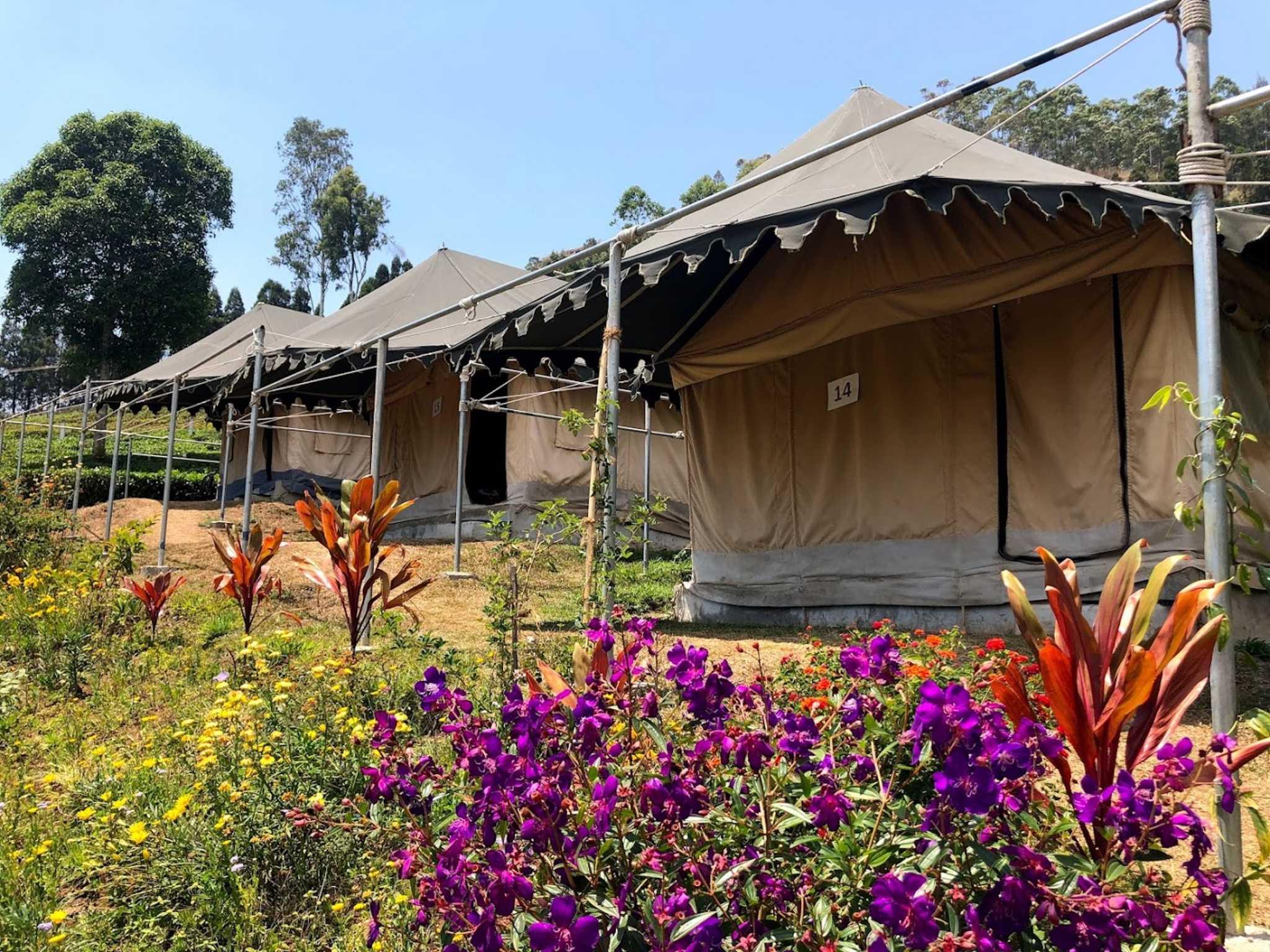 Camping em Munnar, Índia
