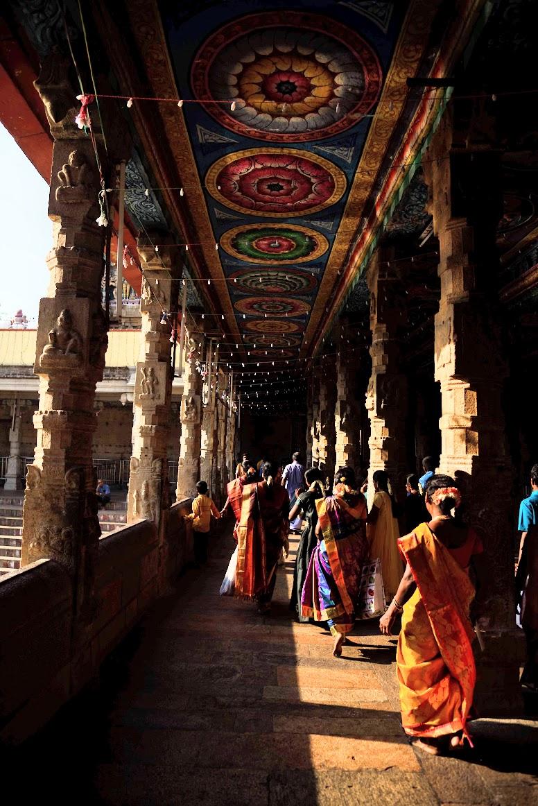 Sari Indiano Templo