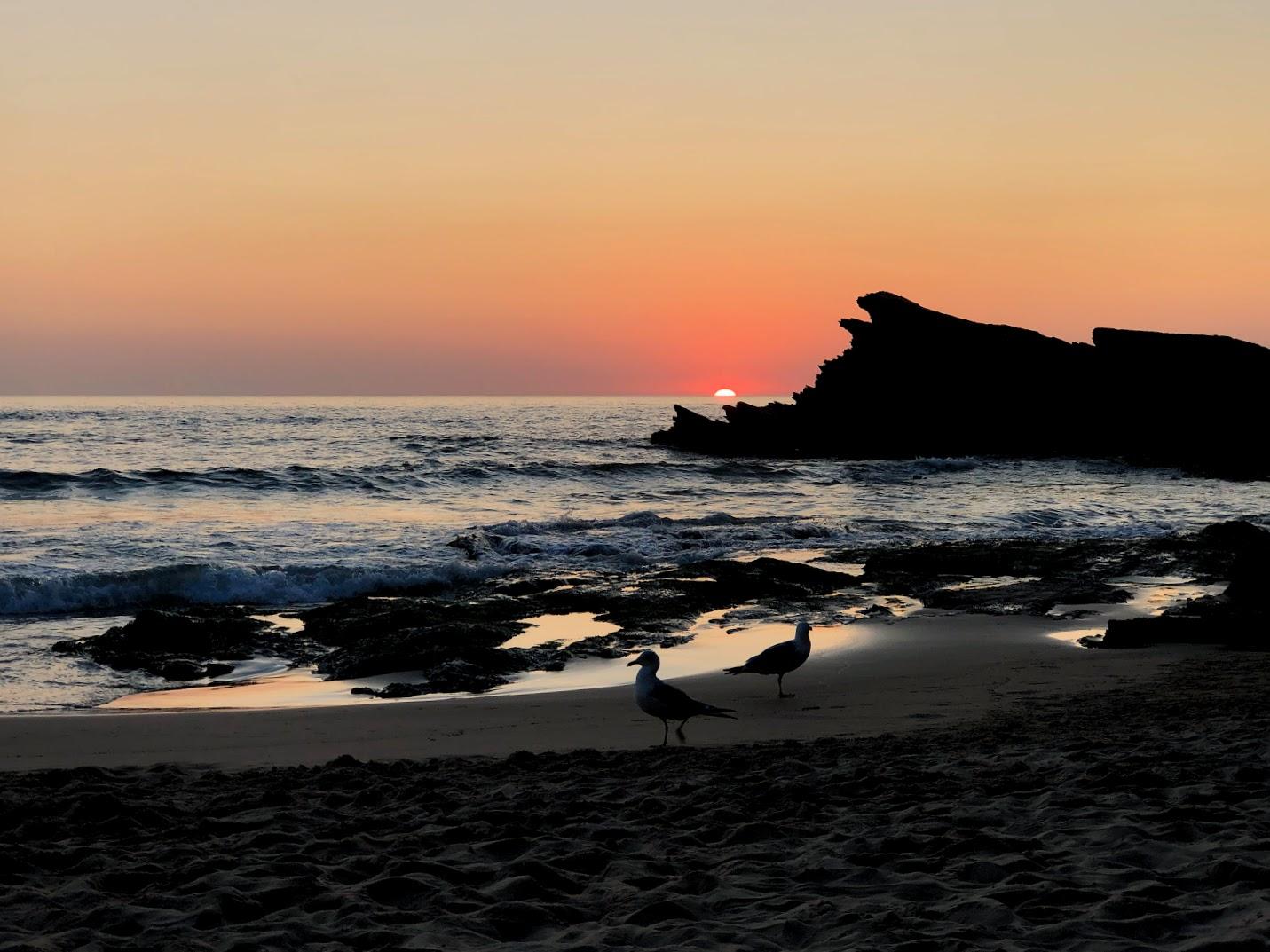 Praia de Zambujeira do Sunset