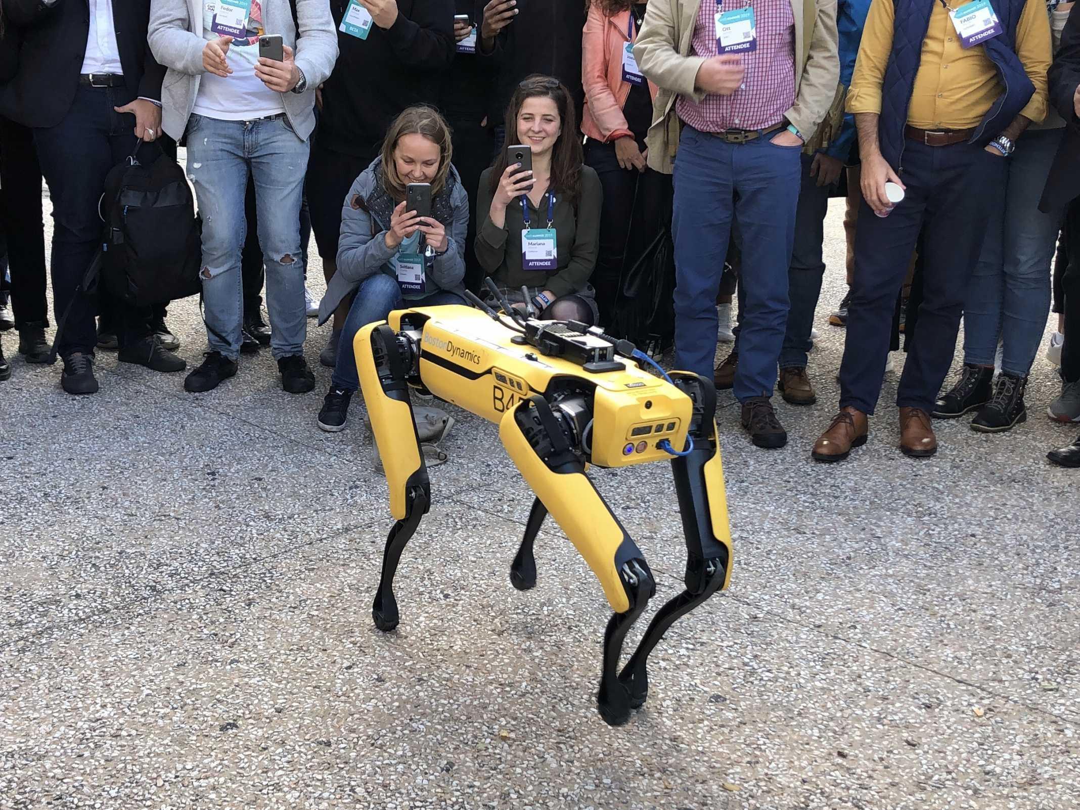 Cão Robo Web Summit
