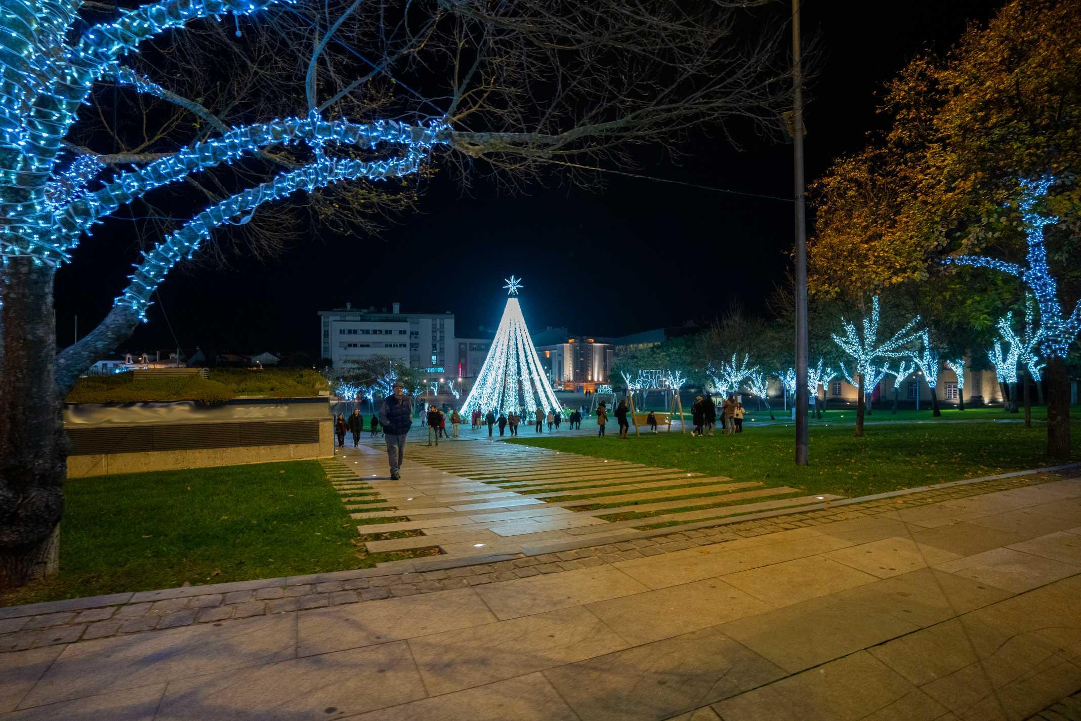 Árvore de Natal Castelo Branco
