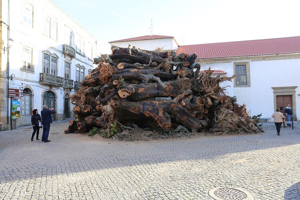 Penamacor Madeiro