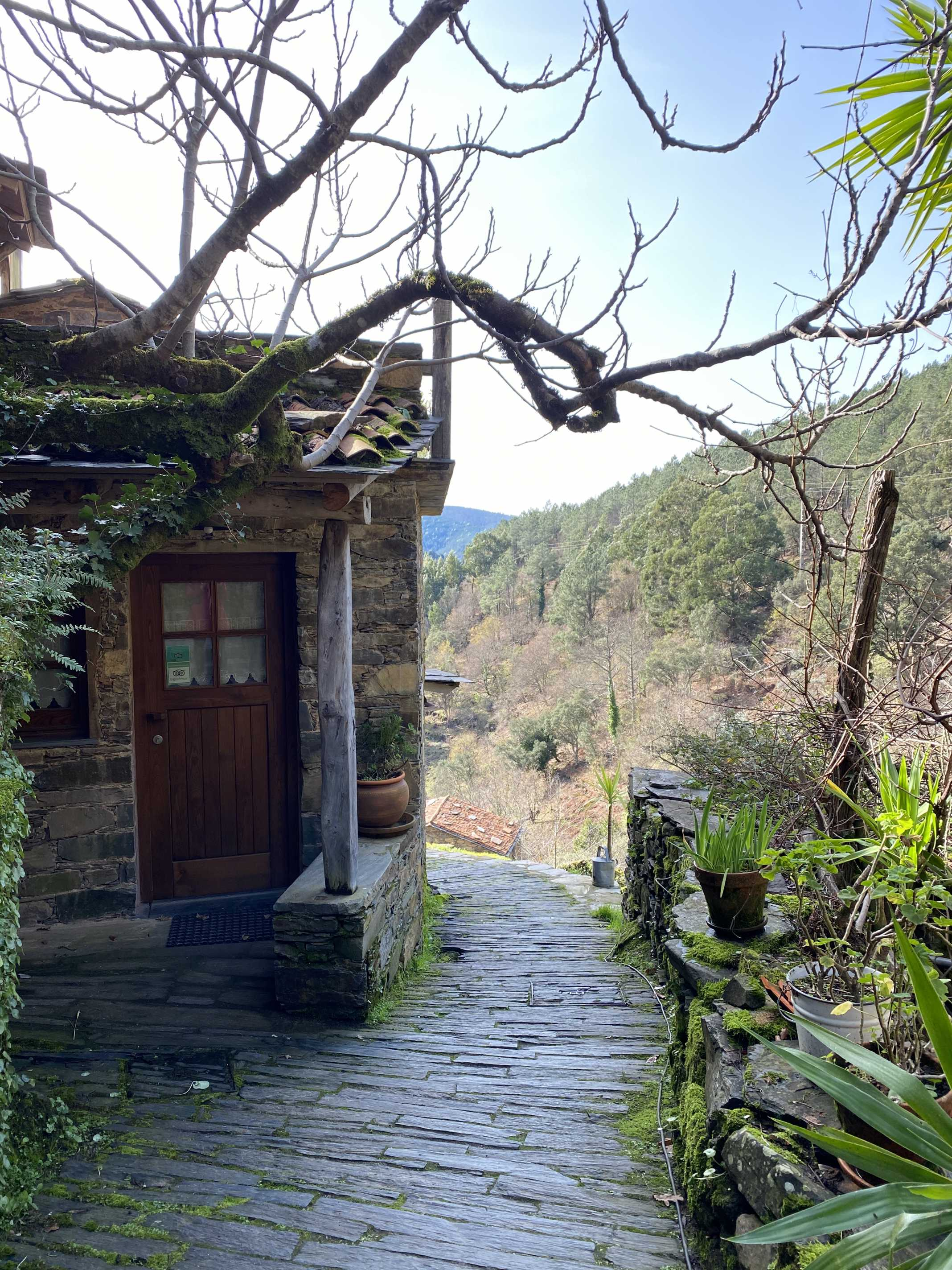 Cerdeira aldeia de xisto