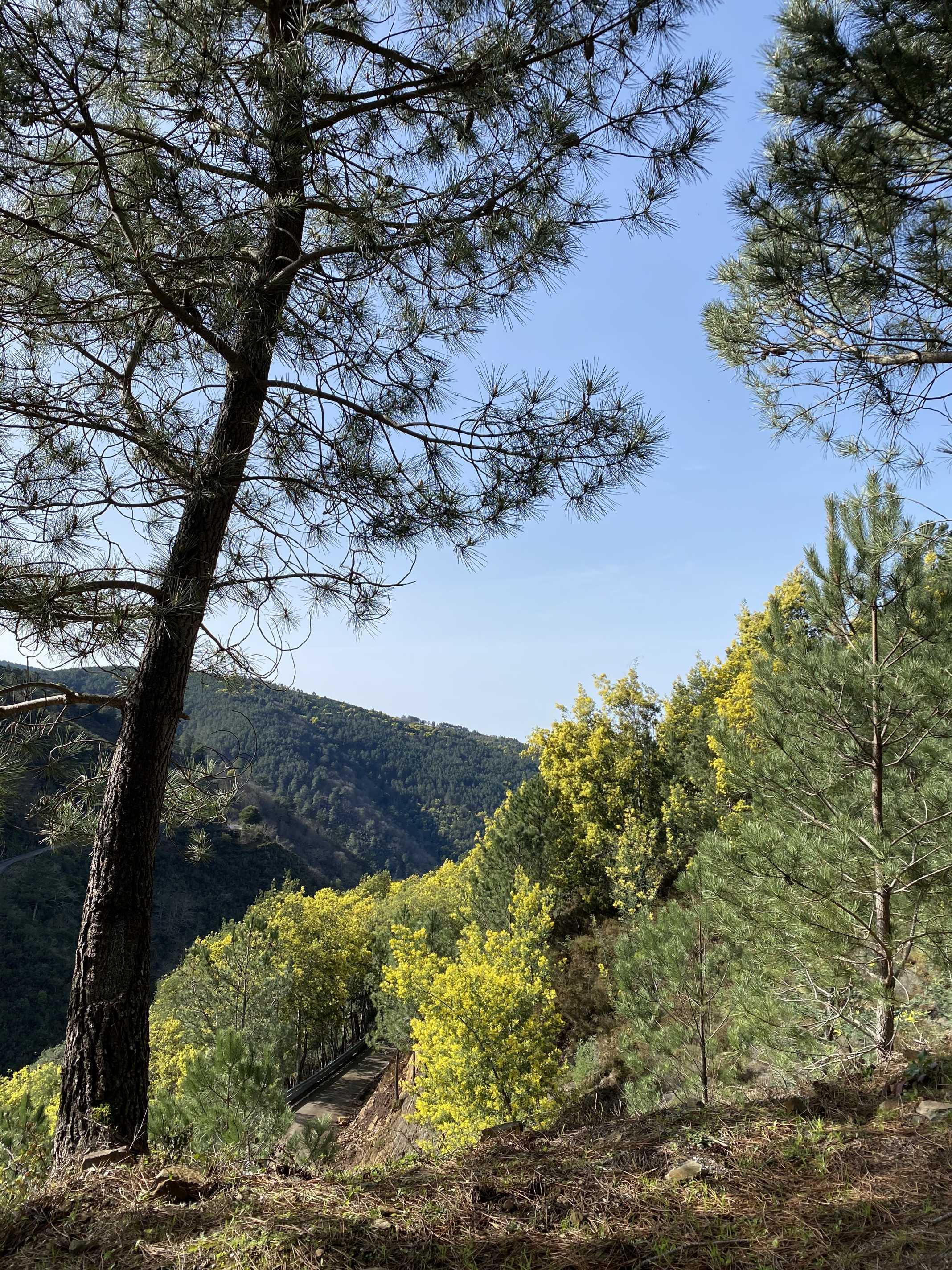 Serra da Lousã Portugal
