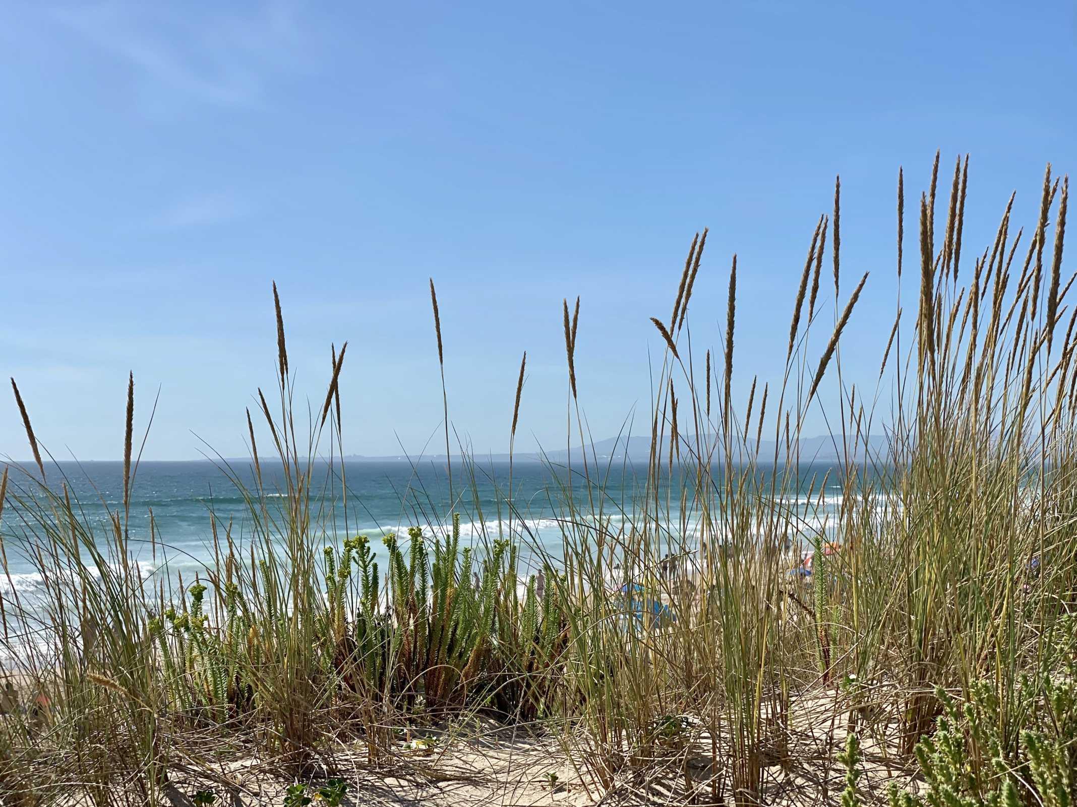 praia costa da caparica