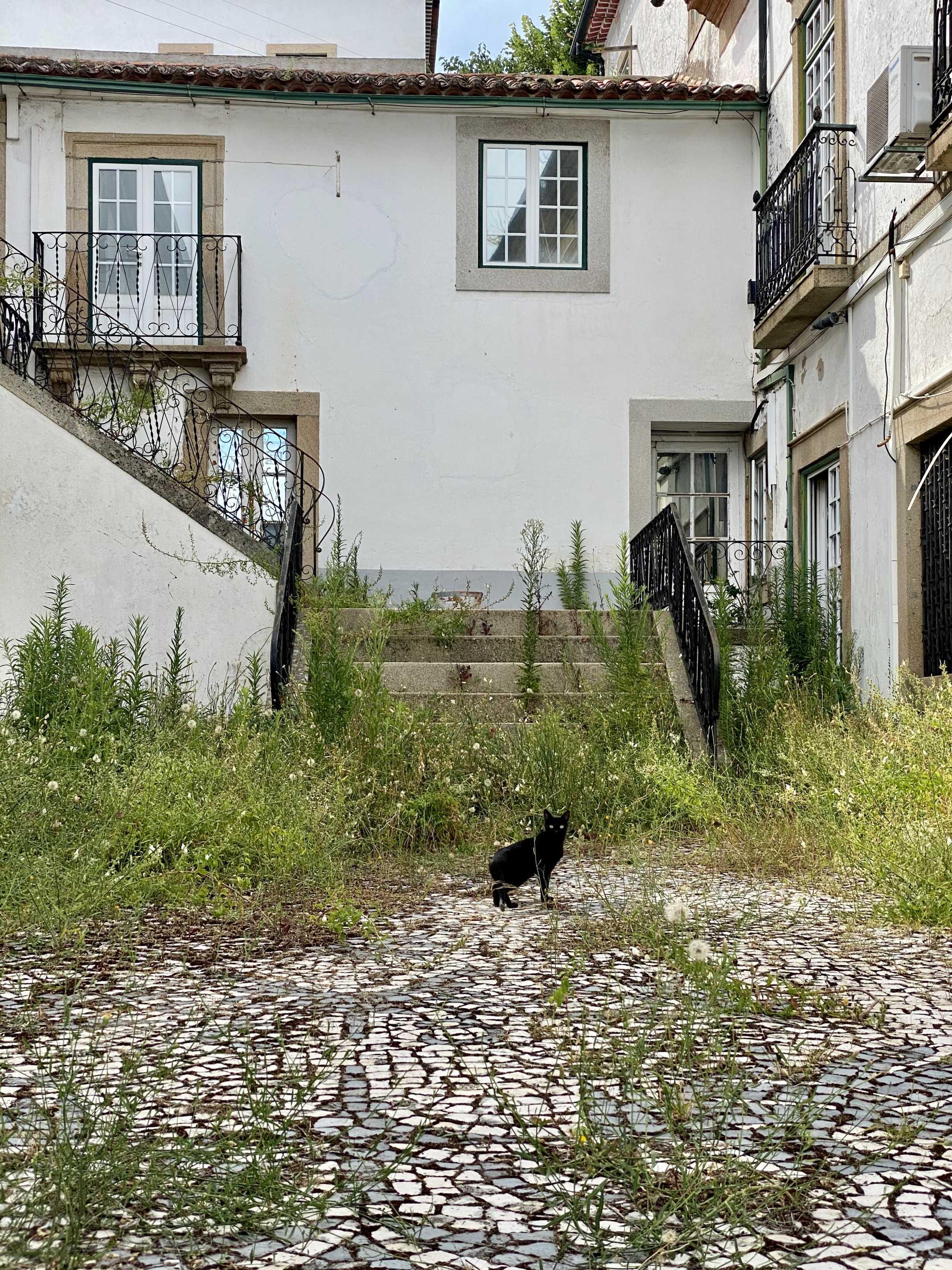 Castelo Branco Beira Baixa
