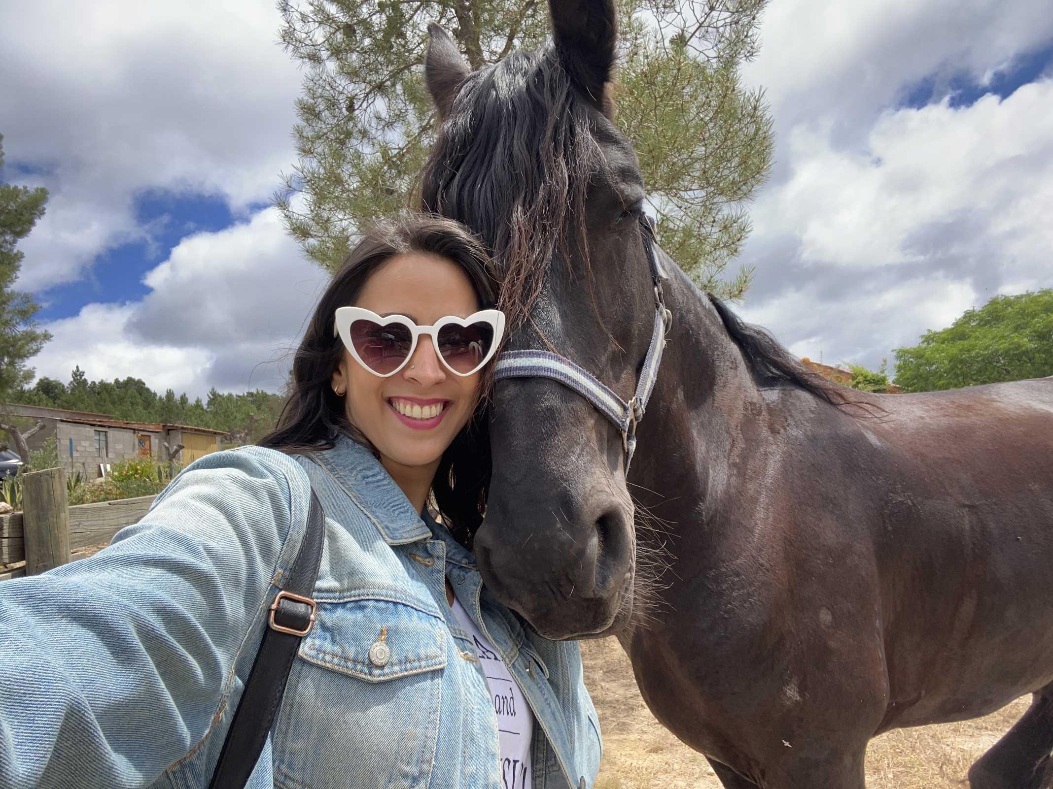 cavalos portugal