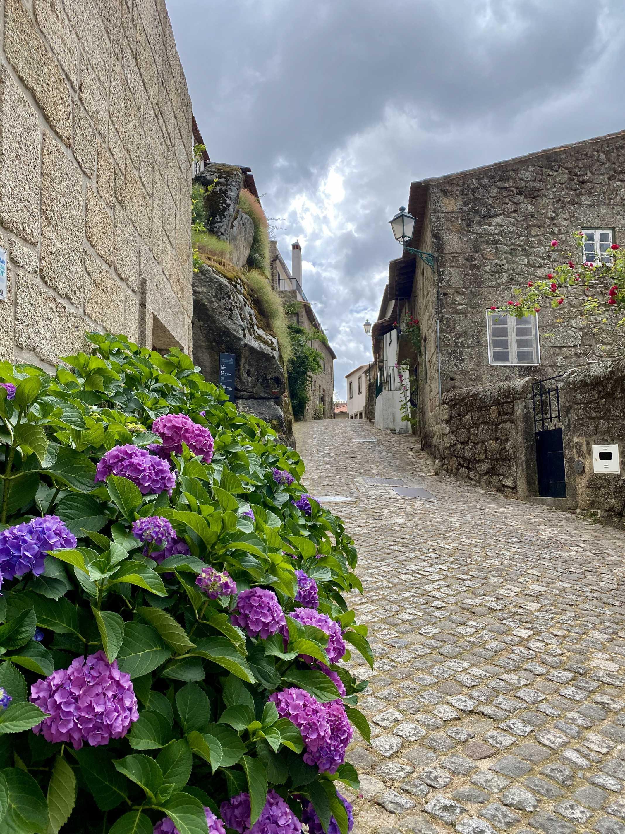 aldeia monsanto