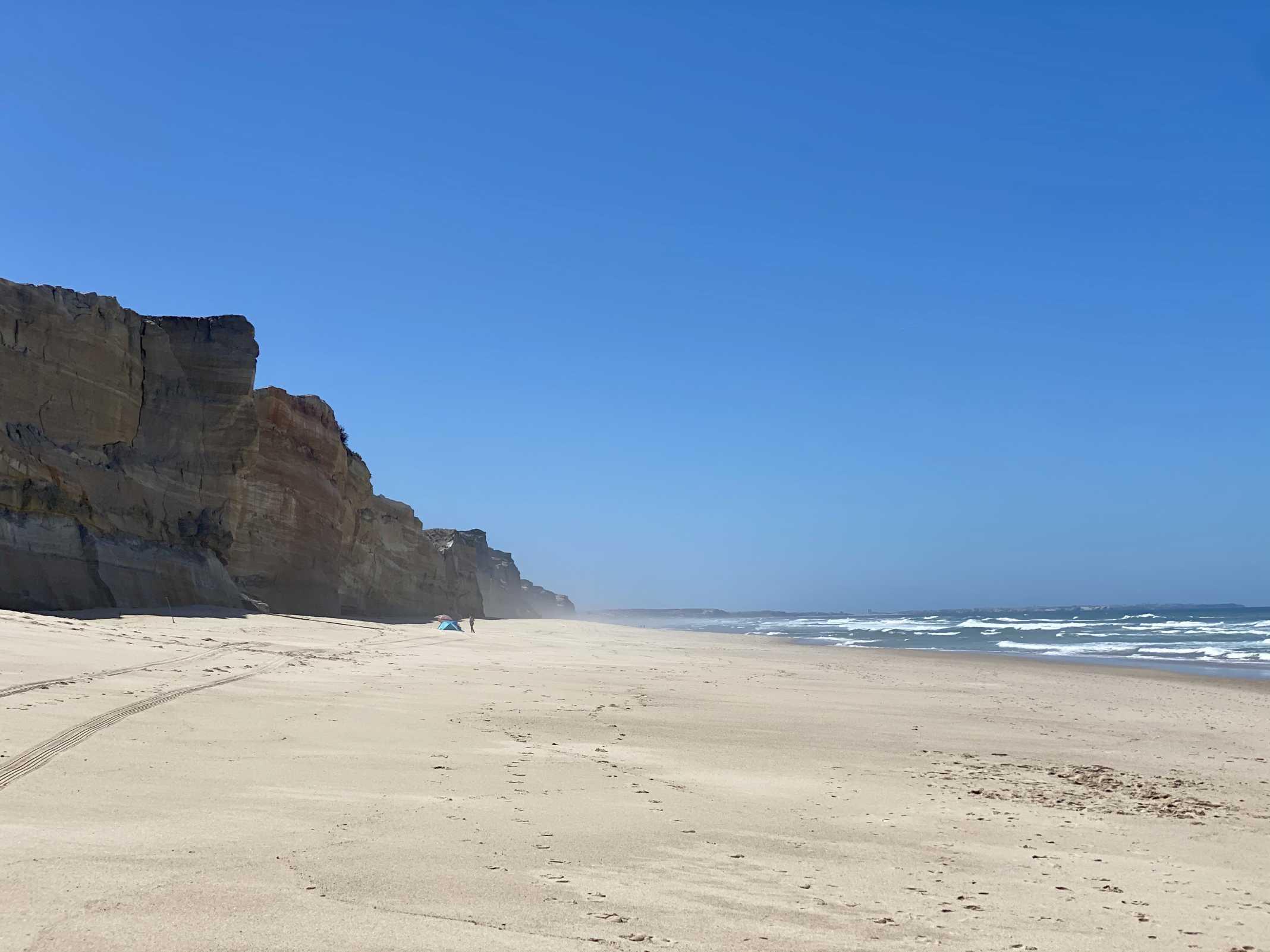 Praia rei cortiço