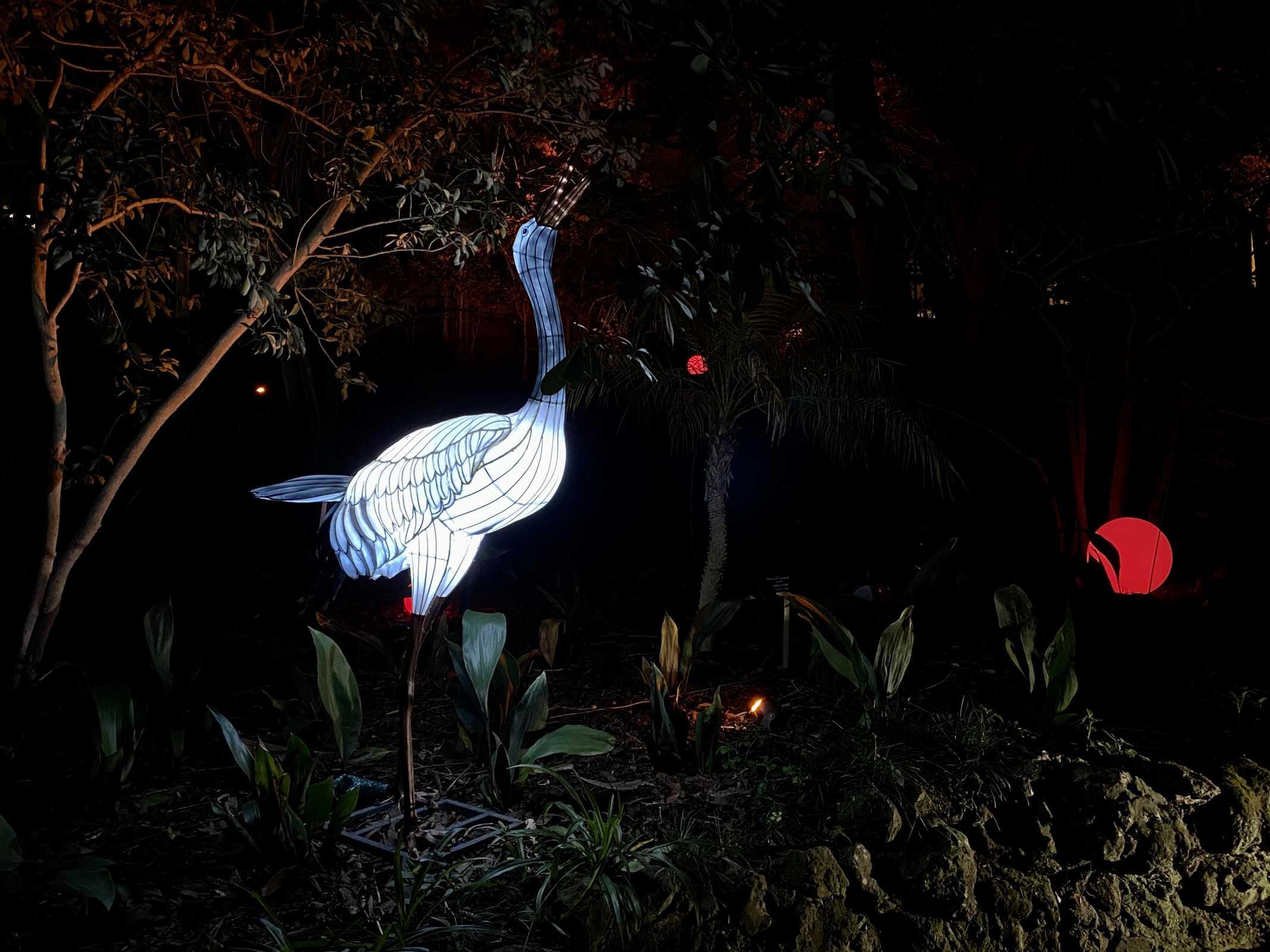 jardim luzes magical garden