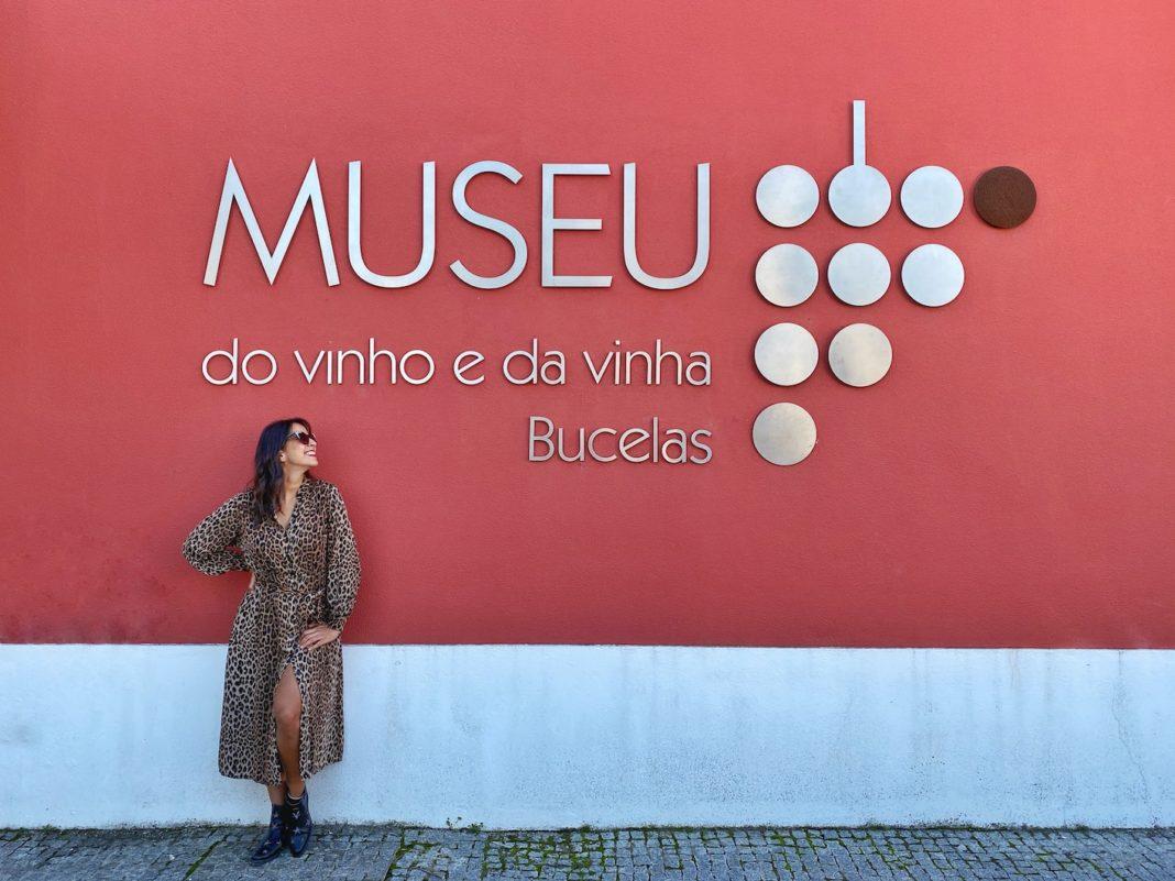 museu do vinho lisboa
