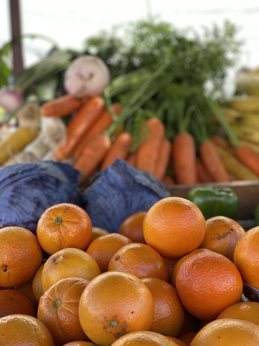 laranja algarve