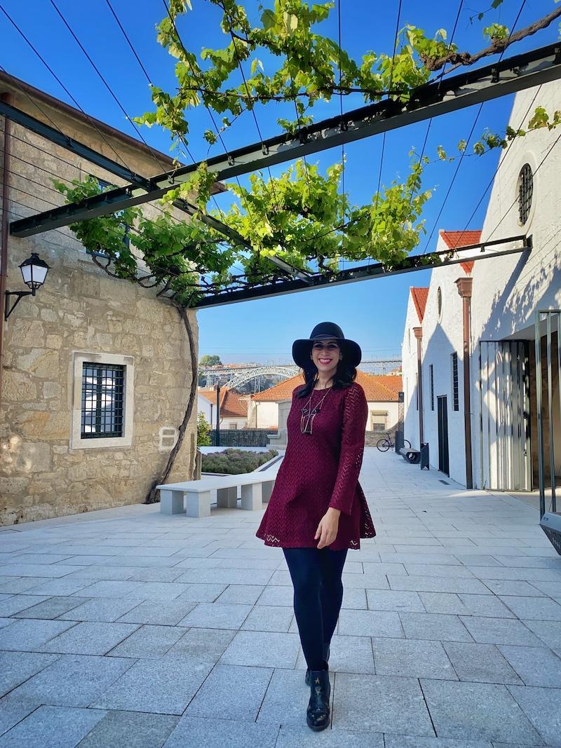 world of wine porto