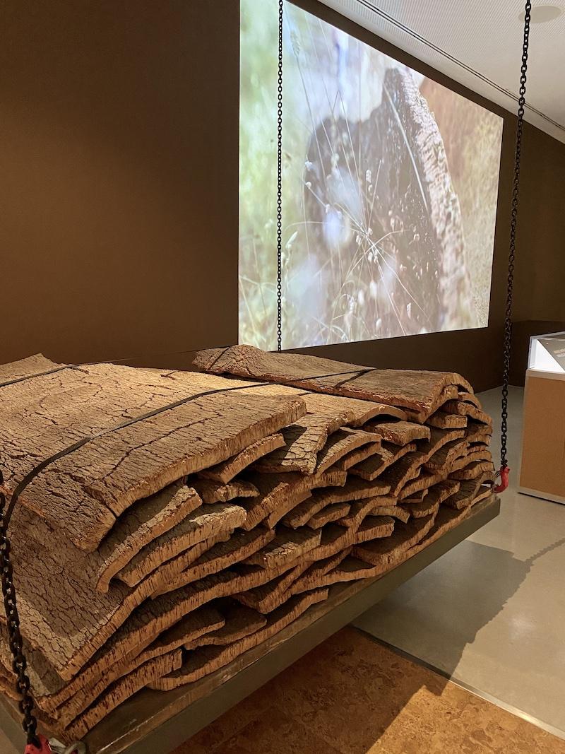 wow porto museu cortiça