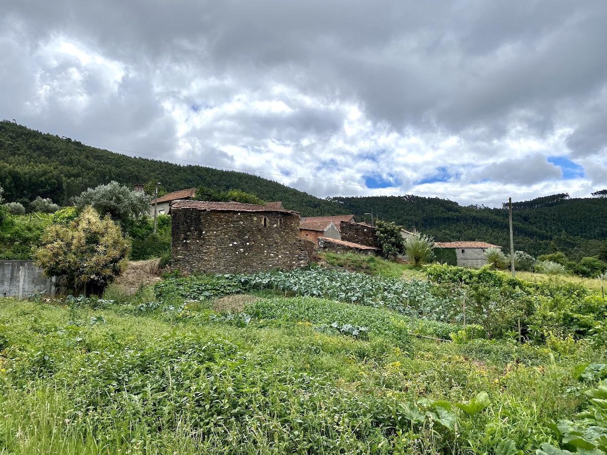 aldeia xisto paredes mortagua
