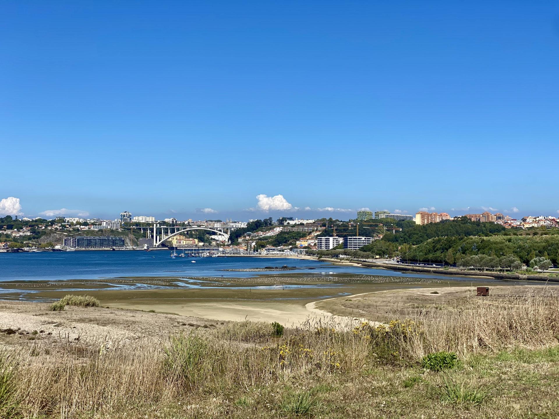 estuário do douro gaia