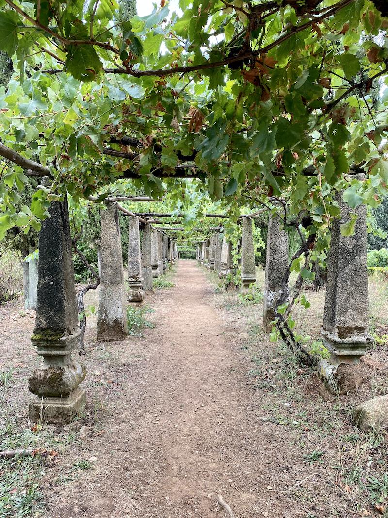 jardins palacio de mateus